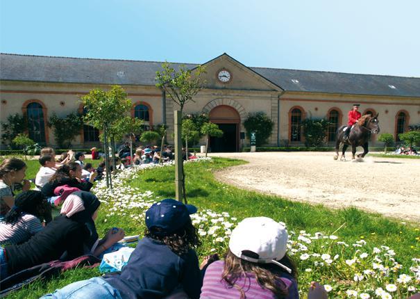 Visite pédagogique collège et lycée  au Haras d'Hennebont
