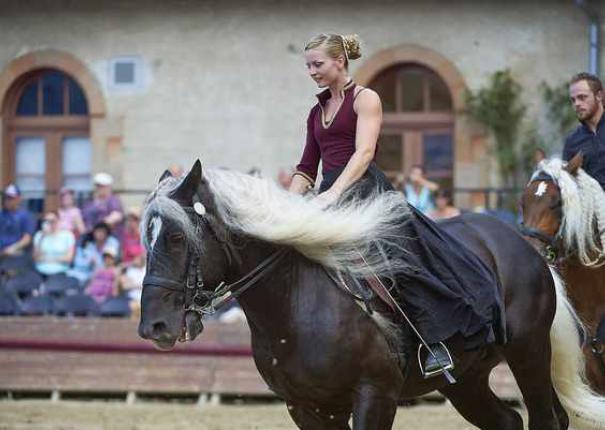 artiste sur cheval lors d'un spectacle équestre en extérieur au Haras d'Hennebont