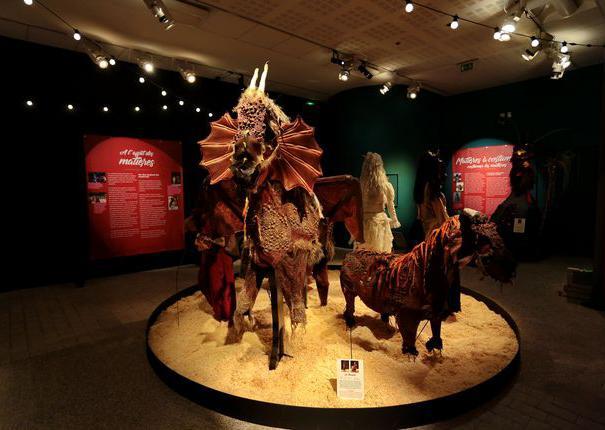 exposition de costumes de chevaux