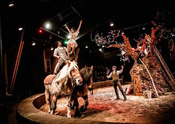Spectacle équestre de Noël au Haras d'Hennebont